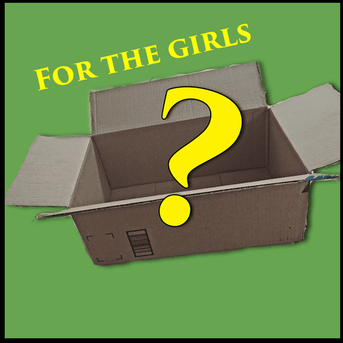 Child Mystery box Girl $20 to $30 value
