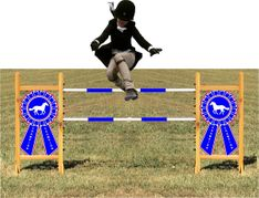 Blue Ribbon Kid Size Horse Jump