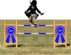 Custom Blue Ribbon Kid Size Horse Jump