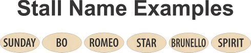 Customize your  Barn with Stall Names - 10.00 each.