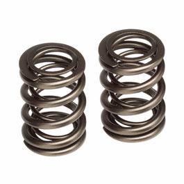 Skunk2 Pro Series Valve Springs Part # 311-05-5380 for the 2002 - 2006 RSX Type S