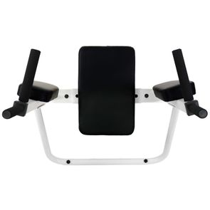 Wall Mount Dip and Vertical Knee Raise Station in White