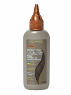 Clairol Beautiful Collection Advanced Gray Solution Semi-Permanent Hair Color-2A RICH DARK BROWN