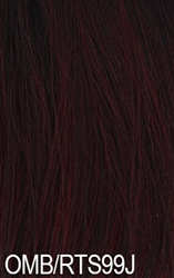 Zury Hollywood Sis Afro Braid Lace Front Wig CARIBBEAN