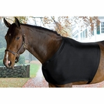 Centaur Lycra Shoulder Guard