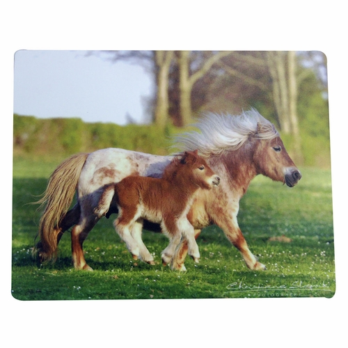 <font color=red> clearance </font color=red> Horsey Mouse Pads