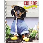 Crusoe the Celebrity Dachshund Engagement Calendar