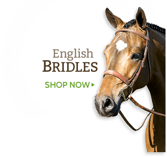 Tack Shack of Ocala- THE SOURCE FOR EVERYTHING EQUINE