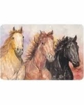 Horse Placemats