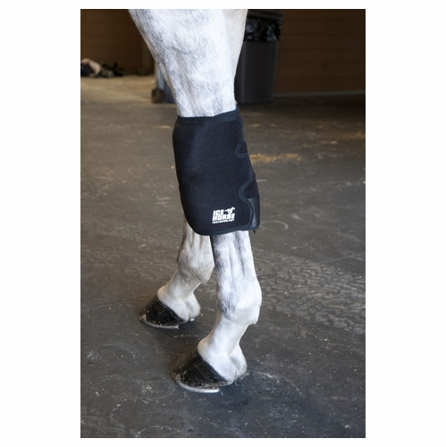 Ice Horse Knee Wrap