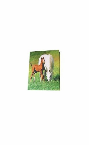 Mare & Foal Puffy Notebook