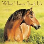 What horses Teach Us Mini