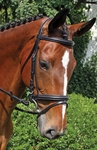 Nunn Finer Brentina Dressage Bridle