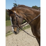 Ovation Stretch Cord Draw Reins