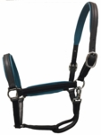 Custom Padded Leather Show Halter