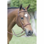 Pessoa Fancy Stitched Wide Nose Bridle With Padding