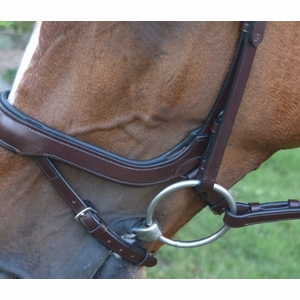 Red Barn Arena Bridle