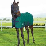 Weatherbeeta 1200D Foal/Mini Blanket <BR> Medium Weight