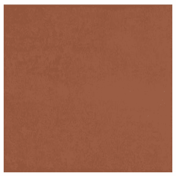 American Olean Theoretical Bold Academic Red 24 x 24