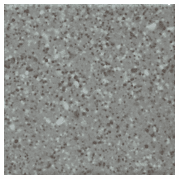 "American Olean Unglazed Colorbody Mosaics Storm Gray Speckled 2"" x 2"""