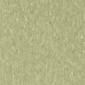 Armstrong Imperial Texture Little Green Apple
