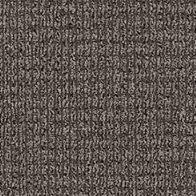 Aladdin Real Element Tinted Gray Carpet