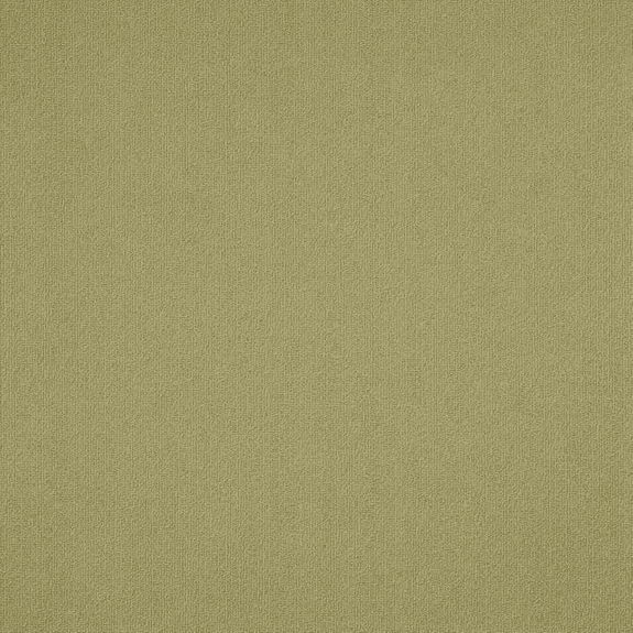 Patcraft Color Choice Fescue Carpet Tile