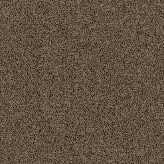 Patcraft Color Choice Timber Carpet