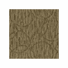 Patcraft Exquisite Graceful Carpet Broadloom
