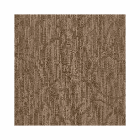Patcraft Exquisite Perfection Carpet  Broadloom