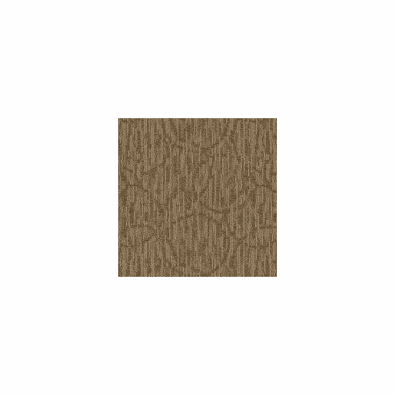 Patcraft Exquisite Sophisticated Carpet  Broadloom