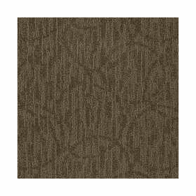 Patcraft Exquisite Splendor Carpet  Broadloom