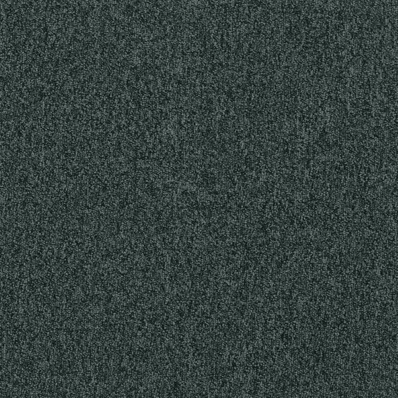 Patcraft Homeroom II 26 Preparatory Carpet