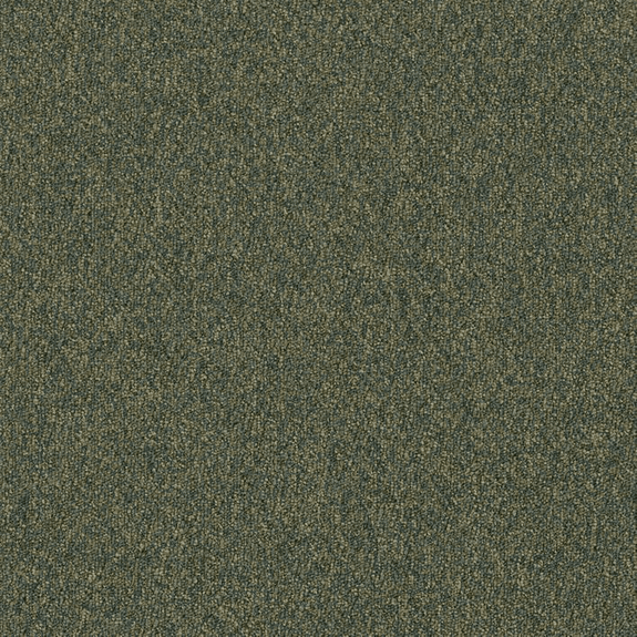 Patcraft Homeroom II Continuing Education Carpet Tile