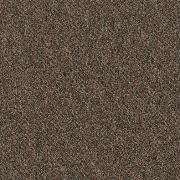 Patcraft Homeroom II Gymnasium Carpet Tile