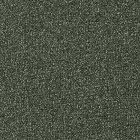 Patcraft Homeroom II Seminar Carpet Tile