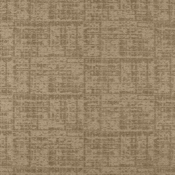 Patcraft Luxurious Cultured Carpet  Broadloom