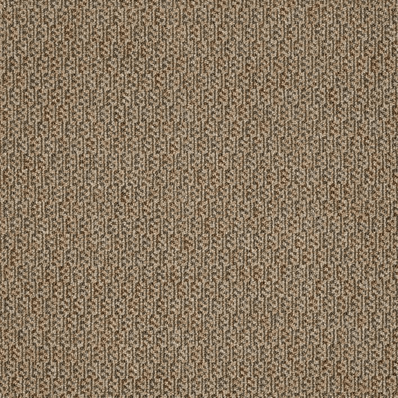 Patcraft Manner Literal Carpet