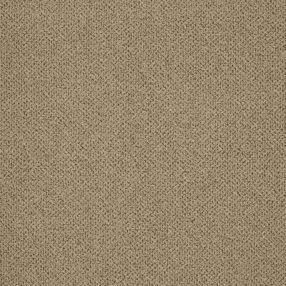 Patcraft Pace Amble Carpet