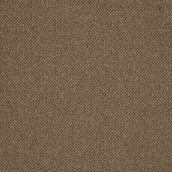 Patcraft Pace Cantor Carpet