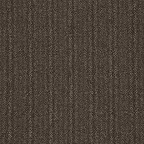 Patcraft Pace Saunter Carpet