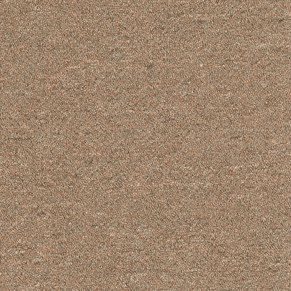 Patcraft Scholastic II 26 Intramural Carpet