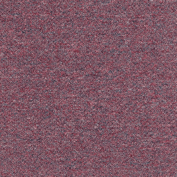 Patcraft Scholastic II 26 Sorority Carpet