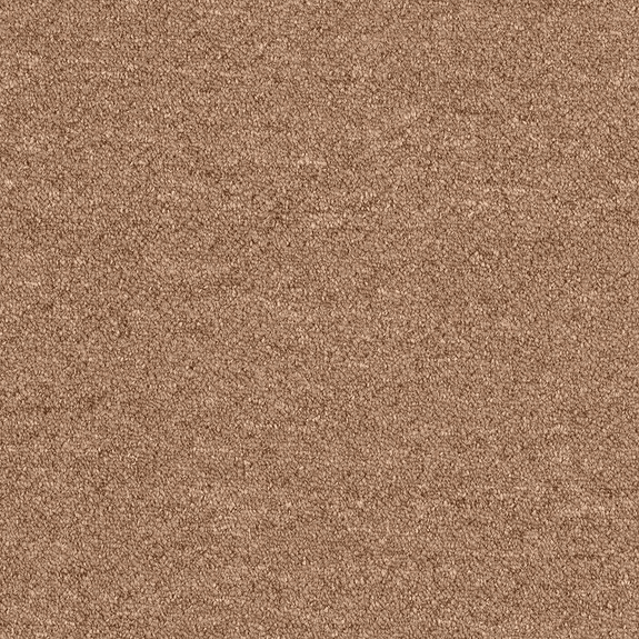 Patcraft Scholastic II 26 Syllabus Carpet