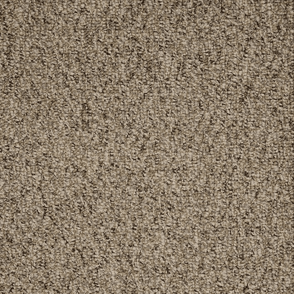 Patcraft Socrates II 26 Sorel Carpet