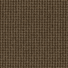 Patcraft Sound Investment Attunement Carpet