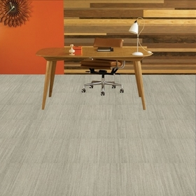 Shaw Contract Earth Tone