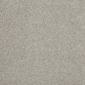 Tuftex Hudson Falls Gray Dust