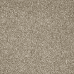 Tuftex Poetic Barely Taupe
