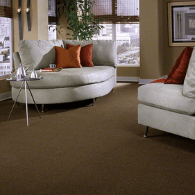 Tuftex Something So Right Carpet